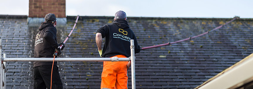 Redland Roof Tile Cleaning Service